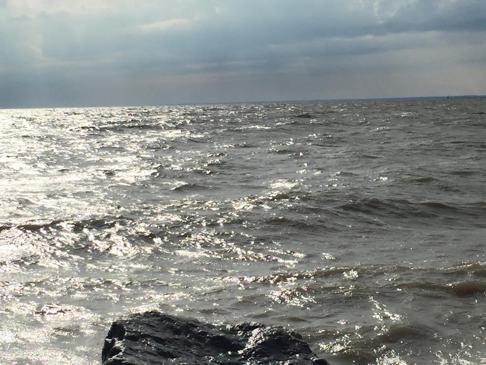 Clemons Boats Marine Forecast 8-20-2015